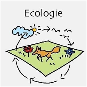 Ecologie – Escape the Classroom